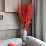 Trawa pampasowa suszona czerwona 4