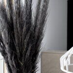 Trawa pampasowa suszona czarna 2