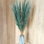 trawa pampasowa seledynowa 2